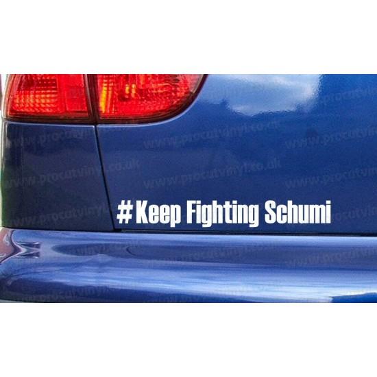 #KEEP FIGHTING SCHUMI Michael Schumacher Car Window Bumper Sticker Decal